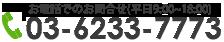 03-5331-3255